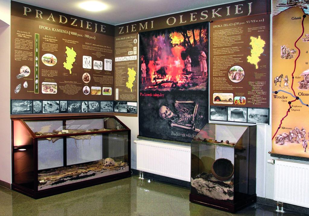 Ekspozycja archeologiczna w Oleskim Muzeum Regionalnym fot. Mirosław Dedyk.jpeg
