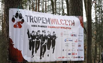 Galeria TROPEM WILCZYM 2019