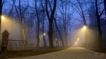 Galeria Duży Park Miejski po remoncie
