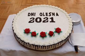 Galeria Sesja Dni Olesna 2021